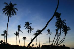 Srilanka vakkert land